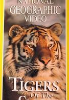 НГО: Сибирские тигры (1997)