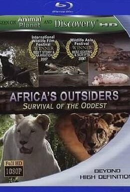 Постер фильма Animal Planet: Дикие изгои в Африке (2006)