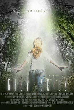 Постер фильма Серые небеса (2010)