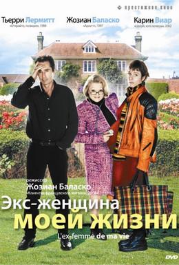 Постер фильма Экс-женщина моей жизни (2004)
