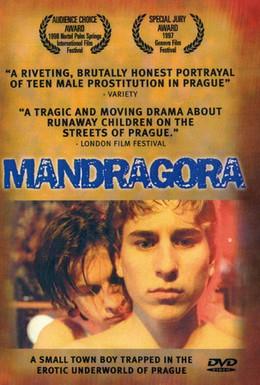 Постер фильма Мандрагора (1997)