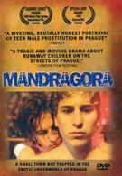 Мандрагора (1997)
