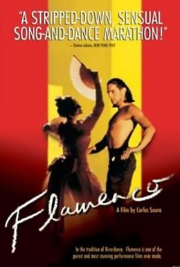 Постер фильма Фламенко (1995)