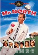 Мистер Норт (1988)