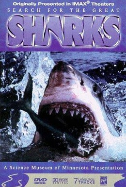 Постер фильма В поисках больших акул (1995)