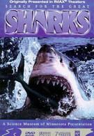 В поисках больших акул (1995)