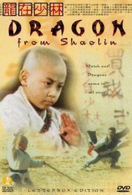 Постер фильма Дракон из Шаолиня (1996)