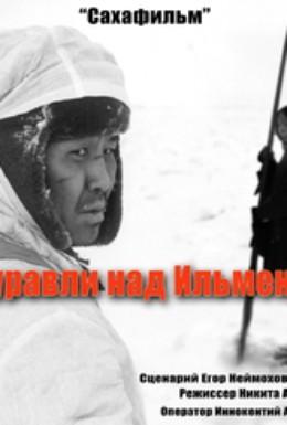 Постер фильма Журавли над Ильменем (2005)