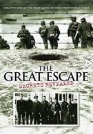Большой побег (2011)