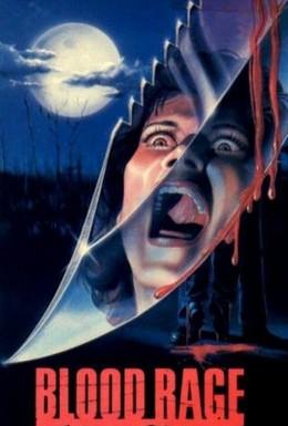 Постер фильма Кровная ярость (1987)