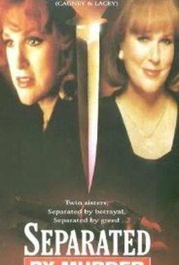 Постер фильма Разделенные убийством (1994)