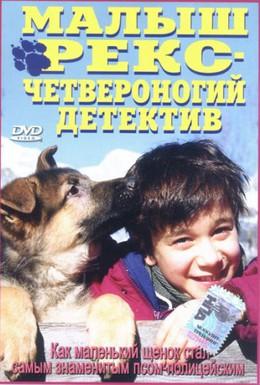 Постер фильма Малыш Рекс – четвероногий детектив (1997)