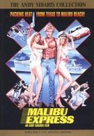 Малибу-экспресс (1985)
