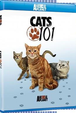 Постер фильма Энциклопедия кошек (2008)