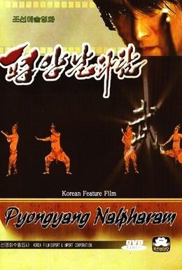 Постер фильма Пхеньян нальпхарам (2006)