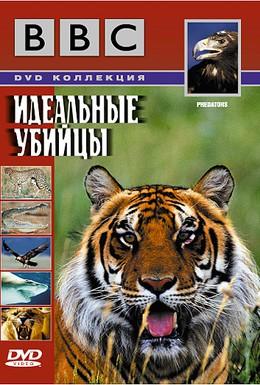 Постер фильма BBC: Идеальные убийцы (2000)
