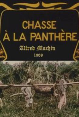 Постер фильма Охота на пантеру (1909)