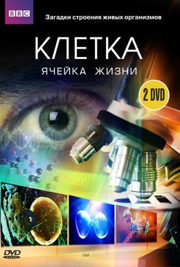 Постер фильма BBC: Клетка (2009)