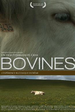 Постер фильма Коровы (2011)