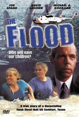 Постер фильма Наводнение: Кто спасёт наших детей? (1993)