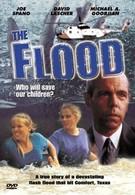 Наводнение: Кто спасёт наших детей? (1993)