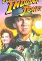 Приключения молодого Индианы Джонса: Весенние приключения (1999)