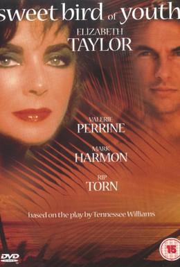 Постер фильма Сладкоголосая птица юности (1989)