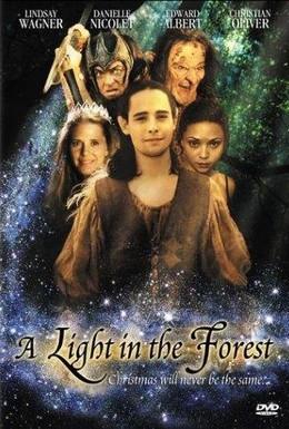Постер фильма Свет в лесу (2003)