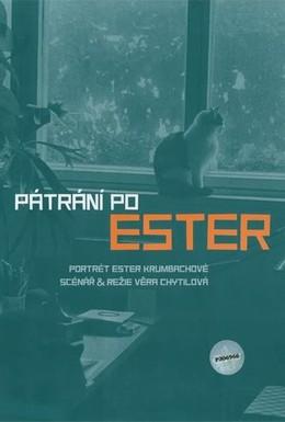 Постер фильма В поисках Эстер (2005)
