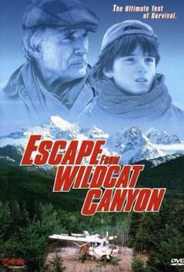 Постер фильма Побег из каньона дикой кошки (1998)