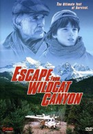 Побег из каньона дикой кошки (1998)