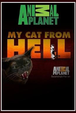 Постер фильма Адская кошка (2011)