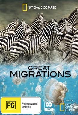 Постер фильма National Geographic Television: Великие миграции: Зов природы (2009)