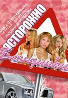 Осторожно, блондинки! (2006)