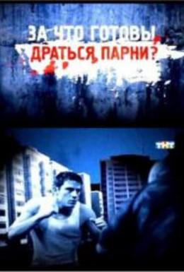 Постер фильма За что готовы драться парни? (2011)