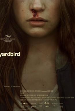 Постер фильма Птичка в клетке (2012)