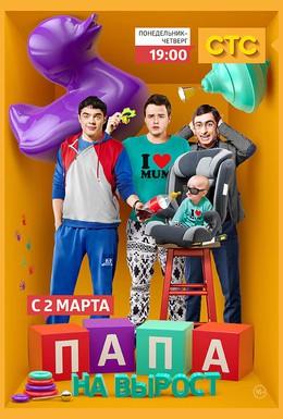 Постер фильма Папа на вырост (2015)