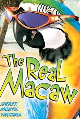 Постер фильма Мак-миллионер (1998)