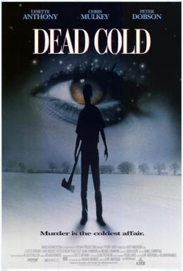 Постер фильма Смертельный холод (1995)