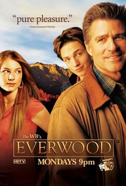 Постер фильма Любовь вдовца (2002)