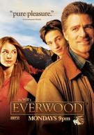Любовь вдовца (2002)