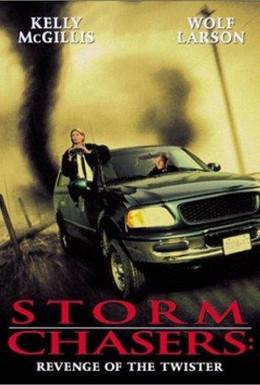 Постер фильма Погоня за смерчем (1998)