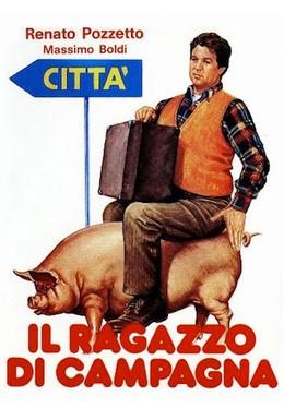 Постер фильма Деревенщина (1984)
