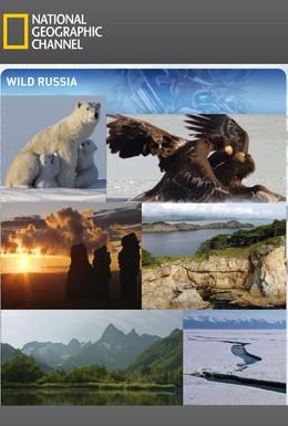 Постер фильма Дикая природа России (2009)