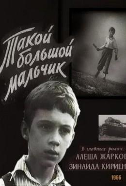 Постер фильма Такой большой мальчик (1966)