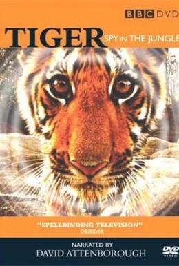 Постер фильма BBC: Тигр – Шпион джунглей (2008)