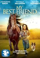 Мой лучший друг (2016)
