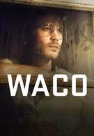 Трагедия в Уэйко (2018)