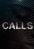 Тревожный звонок (2021)