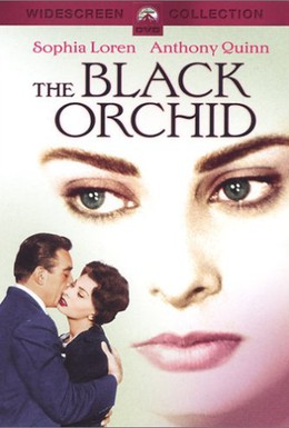 Постер фильма Черная орхидея (1958)